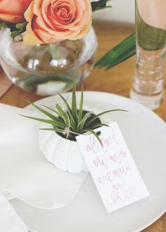 Fill a sea urchin tea light holder with a few small stones and top it with an air plant for a splendid little houseplant. | DIY Air Plant in Sea Urchin Tea Light Holder | Wedding Favor | @kateaspen | @AFabulousFete