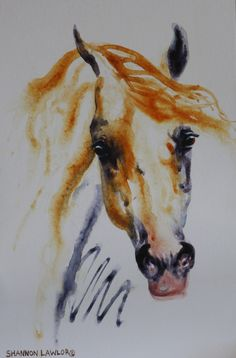 #ArabianHorses #WaterColor