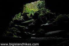 Kaumana Caves State Park - Big Island Hikes