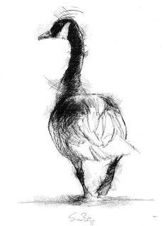 20 Ideas Bird Illustration Ink Sketch For 2019 Bird Drawings, Animal Drawings, Pencil Drawings, Drawing Birds, Drawing Faces, Contour Drawings, Hipster Drawings, Drawing People, Bird Sketch