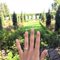 Brides.com: . A gorgeous ring + a gorgeous garden = One heck of an engagement ring selfie.