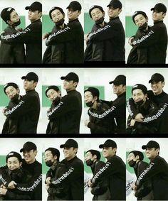 Dino Seventeen, Seventeen Memes, Seventeen Album, Mingyu Seventeen, Diecisiete Wonwoo, Seungkwan, Woozi, Jeonghan, Otp