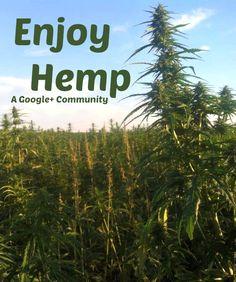 Enjoy Hemp - A Google+ Community