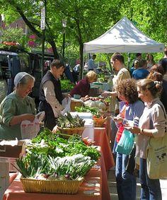 farmer's market at Clark Park in University City section of Philadelphia by keaw