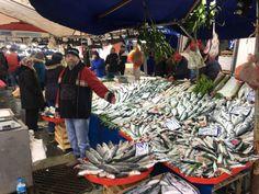 Tekirdağ'ın Çorlu ilçesinde kurulan semt pazarlarında tezgah açan balıkçılar, son dönemde renklenen balık tezgahlarının pazar yerlerini şenlendirdiğini kaydetti.   #Balık #balıkfiyatları #balıkçı #corlu #Fi #haber #haberi #haberler #haberleri #İsmailÇelik #Karadeniz #Tekirdağ