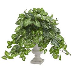 Add the look of nature with carefree convenience to your home or office with the Nephthytis Artificial Plant in Grey Urn by Nearly Natural never needs watering or pruning. This charming and lush design stands on a table or desk for dramatic effect. Silk Plants, Potted Plants, Silk Tree, Plant Wall, Artificial Plants, Topiary, Urn, Green Colors, A Table