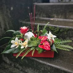 The recipient of this arrangement is sure to be Starstruck by this Christmas Flower Arrangements, Unique Flower Arrangements, Floral Centerpieces, How To Wrap Flowers, Valentines Flowers, Same Day Flower Delivery, Funeral Flowers, Tropical Flowers, Flower Boxes