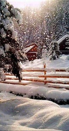 Beautiful snow scene. Look like a Christmas card.