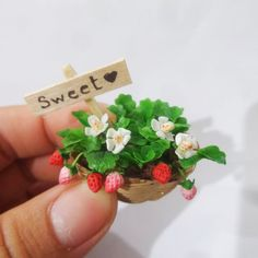 Dollhouse Miniatures HANDMADE Flower Clay Garden Fairy strawberry Rement size #Meohouseminiatrue