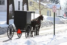 amish live all around our county