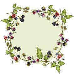 watercolor round frame of blackberries on Behance