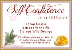 Self Confidence in a Diffuser - Embraced Essence