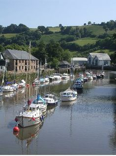 All About Totnes, Devon, England South Devon, Devon Uk, Devon Holidays, Dorset Coast, Devon England, Devon And Cornwall, Kingdom Of Great Britain, Just Dream, English Countryside