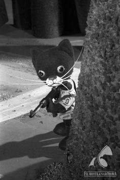 """Naughty #cat in the film """"Kotek Napłotek"""", 1957"""