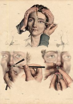 2 Antique Medical Anatomy Prints Lacrimal Apparatus Eye PL 3 4 Bourgery 1831 | eBay