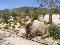 A Southwestern garden design