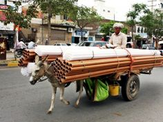 A donkey cart carrying pipes in Sialkot. PHOTO: INP