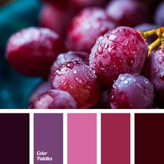 Color Palette #3217 | Color Palette Ideas | Bloglovin'