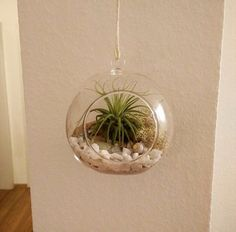 Beautiful beachy hanging globe by Ms A.S. in Bad Vogel, Germany