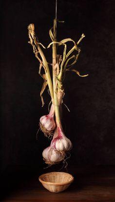 "Saatchi Art Artist Cecilia Gilabert; Photography, ""Heads of garlic"" #art"