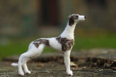 Ack! A felted whippet! It looks just like Diego! WANT!