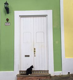 Two common sights in Old San Juan: colorful buildings and the cats. The cats are not strays; they are well-taken care of. They are very important in fighting the rats. #OldWorldCharm #Caribbean #CaribbeanColors #Cats #OldSanJuan #PuertoRico #Travel #Traveling #WorldTravel