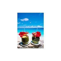 bleeding, Frégate, Getranke, island, isle, coconut, Seychelles, beach... ❤ liked on Polyvore featuring home, home decor, holiday decorations, island home decor, holiday home decor, seychelles and holiday decor