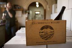 All in good time: Award-winning wines of La Chiripada