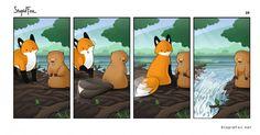 Beaver   StupidFox