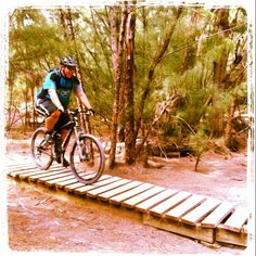 """""""on the road again"""" Riding Stangler Fig Trail's last third, over the bridge... at Oleta State Park Mountain Bike Trail Head"""