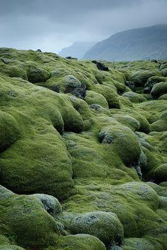 lava fields covered with moss   Vestur-Skaftafellssysla, Iceland