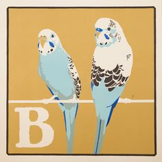 Budgerigar | The Red Door Gallery | Affordable Art and Design | Editioned Prints | Unique Gifts