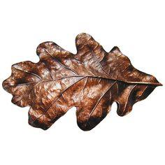 Notting Hill Leaves Oak Leaf Bin Pull   Wayfair