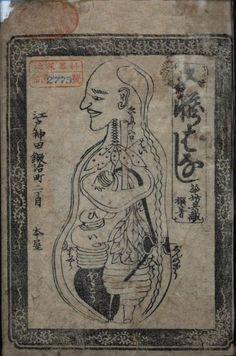 Japanese anatomy drawing