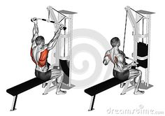 Exercising. Reverse grip lat pulldown