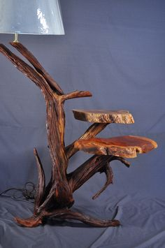 Driftwood Floor Lamp