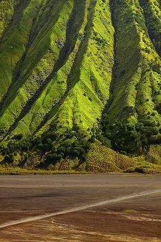 visitheworld:  The green slopes of Mount Batok, East Java, Indonesia (by Jessy Eykendorp).