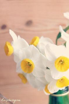 Spring Flowers by Raspberrysue