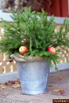 Outdoor Christmas decoration - # free # decoration # in # Christmas decoration