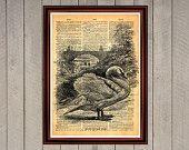 Swan bird animal lake nature print Rustic decor Cabin Vintage Retro poster Dictionary page Home interior Wall 0010