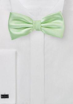 Schleife unifarben blassgrün