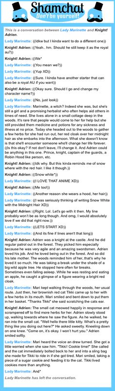A conversation between Knight! Adrien and Lady Marinette