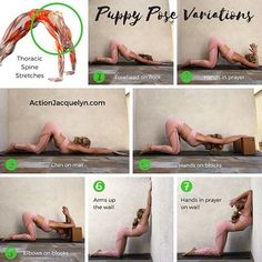 @bestyoga post today! by @actionjacquelyn . You're only as young as your spine is flexible, so take the time to mobilize it! Today's @getstretchy posture is Puppy Pose!! or Uttana Shishosana If you are enjoying these tutorials then please do me a favor and tag a friend and spread the love! ♀️ I would be so grateful These puppy poses are AMAZING for opening the thoracic spine, chest, pecs, lats, abs, triceps, shoulders - basically the front side of the upper body. _____ Tip