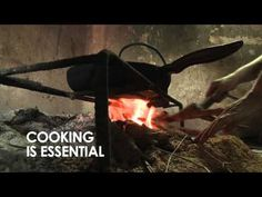 Cooking is essential...but it shouldn't kill. Global Alliance for Clean Cookstoves