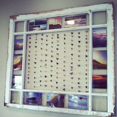 Beach house decor- Old window to display sharks teeth we've collected.