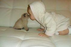 nose kisses!