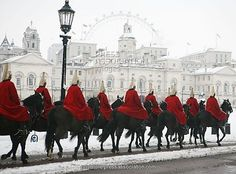 Members of The Life Guards - a regiment of the Household Cavalry-ride through central London on their way to the ceremonial Changing of the Guard on Horse Guards Parade.
