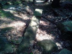 Cesta lesem, pozůstatky těžby kamene na klášter v Oseku, Česká republika