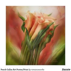 This painting of a bouquet of luscious pink and mauve calla lilies is from the Language Of Flowers collection by Carol Cavalaris. Artwork is also available in peach callas, white callas, as well as yellow callas. Art Floral, Peach And Green, Language Of Flowers, Amazing Paintings, Poster Prints, Art Prints, Photoshop, Illustrations, Calla Lily