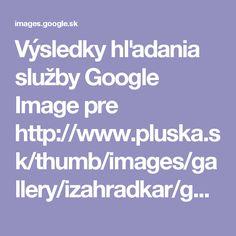 Výsledky hľadania služby Google Image pre http://www.pluska.sk/thumb/images/gallery/izahradkar/galerie/chryzantemy-balkon/o_balkon-jesen-perex.jpg?w=670&h=375&ip=5